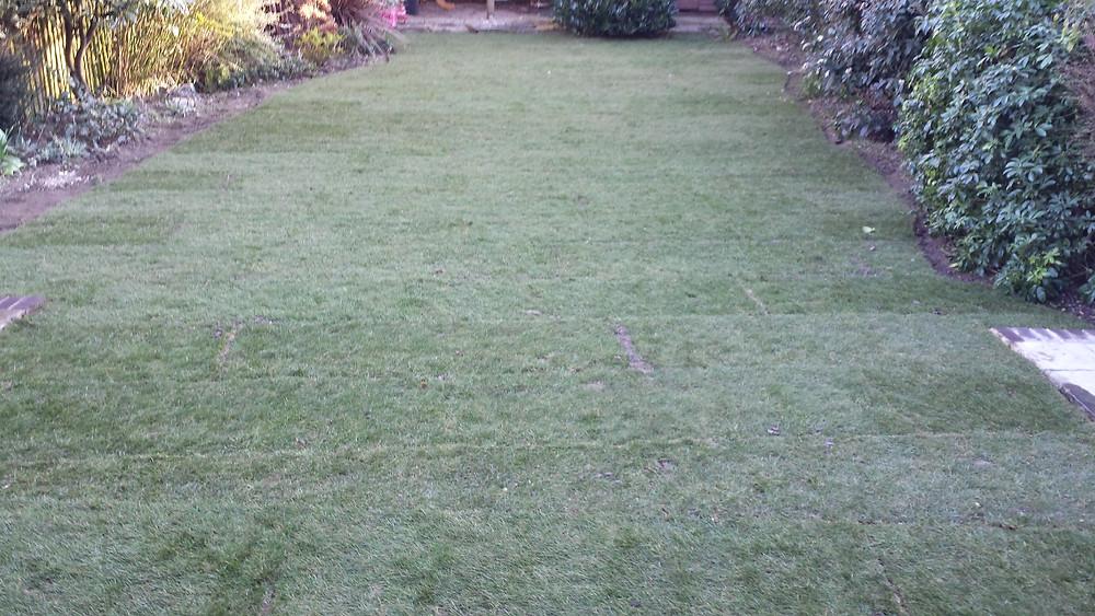 Grass turfed garden