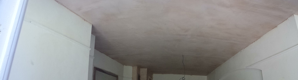 Plaster skim ceiling