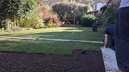 Laying New Grass Turf