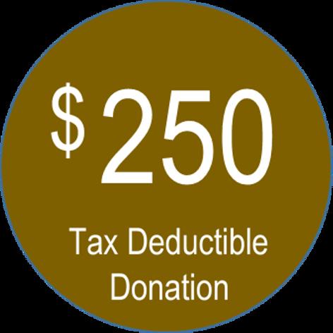 Charitable Donation ($250.00)