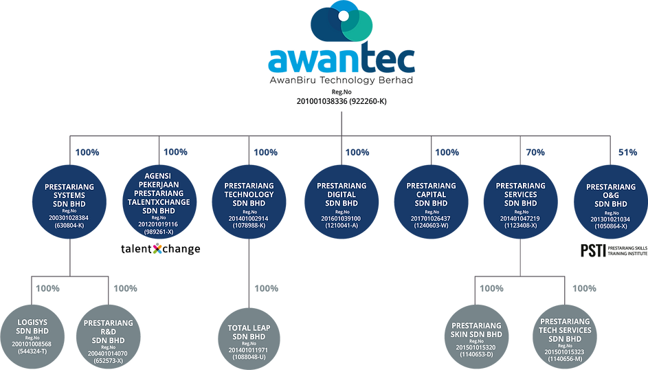Awantec corporate structure_v1.png