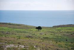 Le Orte (Otranto)