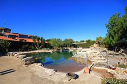 outdoor pool piscina