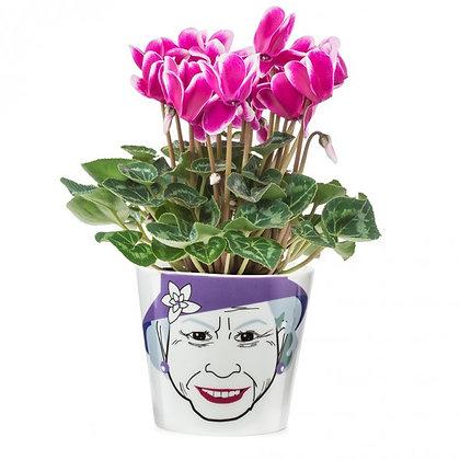 Flower Queen, small: Flower Power