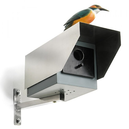 Big Brother: Birdhouse
