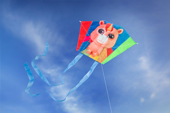 Mini Kite: Rainbow Lily