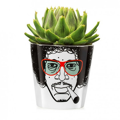 Herbal Jimmy, big: Flower Power
