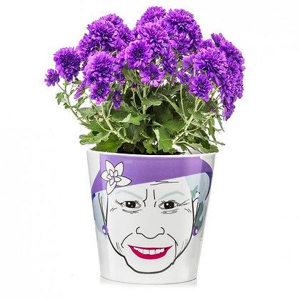 Flower Queen, big: Flower Power: