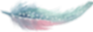 kisspng-feather-blue-feather-5a87e174b44