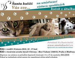 Utulek pro kocky - Prague, CZ