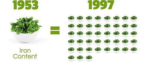 spinach-1997.png