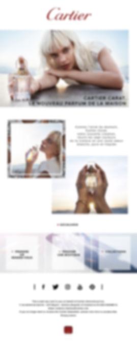 Emailing Carat V1.jpg