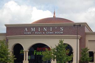 Amini's
