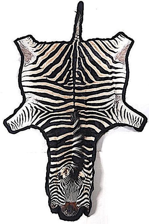 "Vintage Burchell Zebra Skin Rug - 10' 2"" x 5' 5"""
