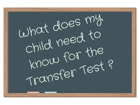 What should my child know for the Northern Ireland Transfer Test?