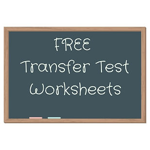 FREE Transfer Test worksheets and answers