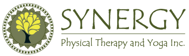 synergy_web_logo.png