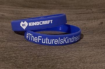 TheFutureIsKindness_wristband.jpg