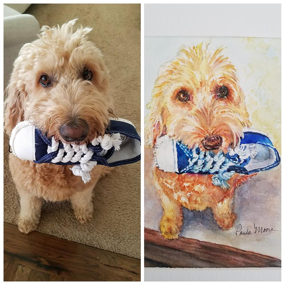 Custom pet portrait of Murphy