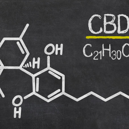 CBD Oil for Pets:The Complete Guide