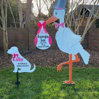 Pink Girl Stork with Pink Girl Dog