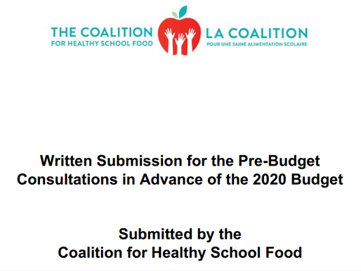 Submission to the Pre-Budget Consultations in advance of the 2020 Budget