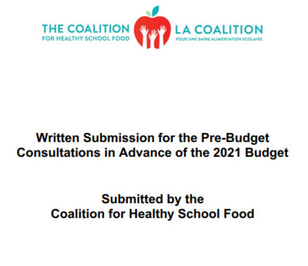 Submission to the Pre-Budget Consultations in advance of the 2021 Budget