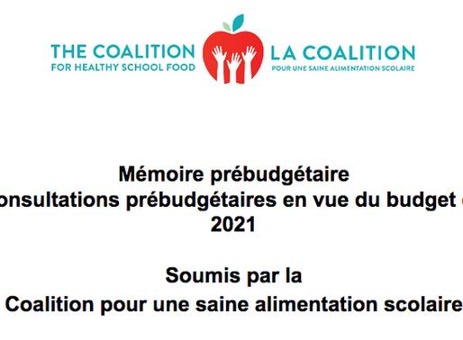 Soumission pour les Consultations prébudgétaires en vue du budget de 2021