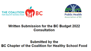 Submission to the BC Pre-Budget Consultations in advance of the 2021 Budget