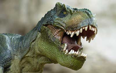 tyrannosaurus-855188_250x400.jpg