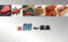 xDB_for_gousho_back.jpg