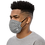 Thumbnail: Roiretni Grey pattern Face mask