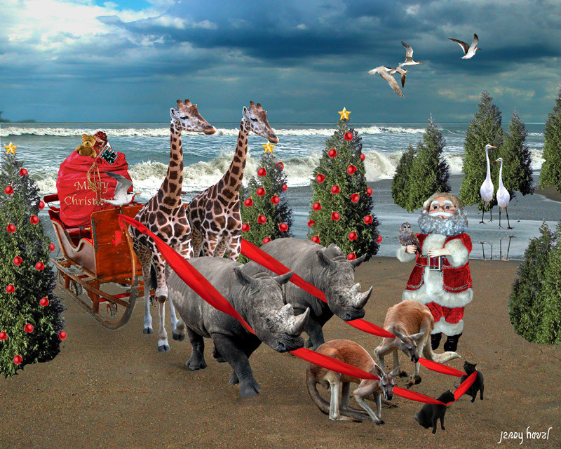 The reindeers are sick