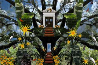 Surrealscapes 1