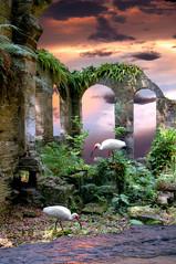 Ruins 5
