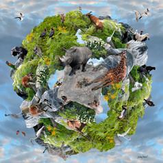Animal Planet II