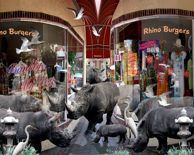 Rhino Burgers