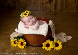 LittlePortraits-Newborns