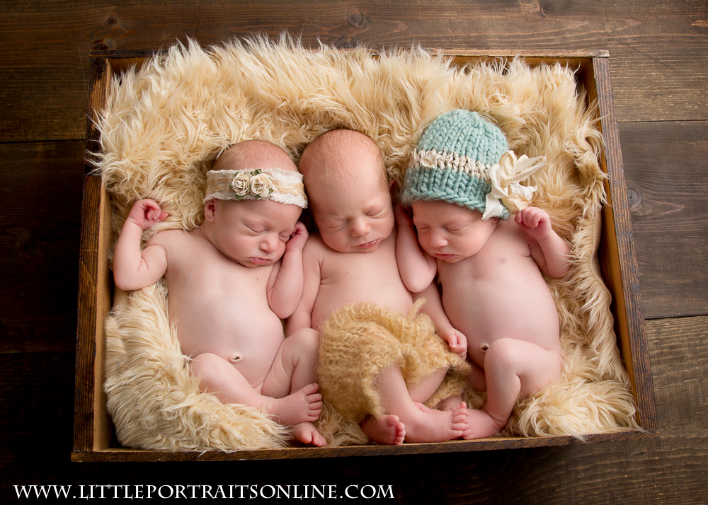 Triplet Newborn photographer