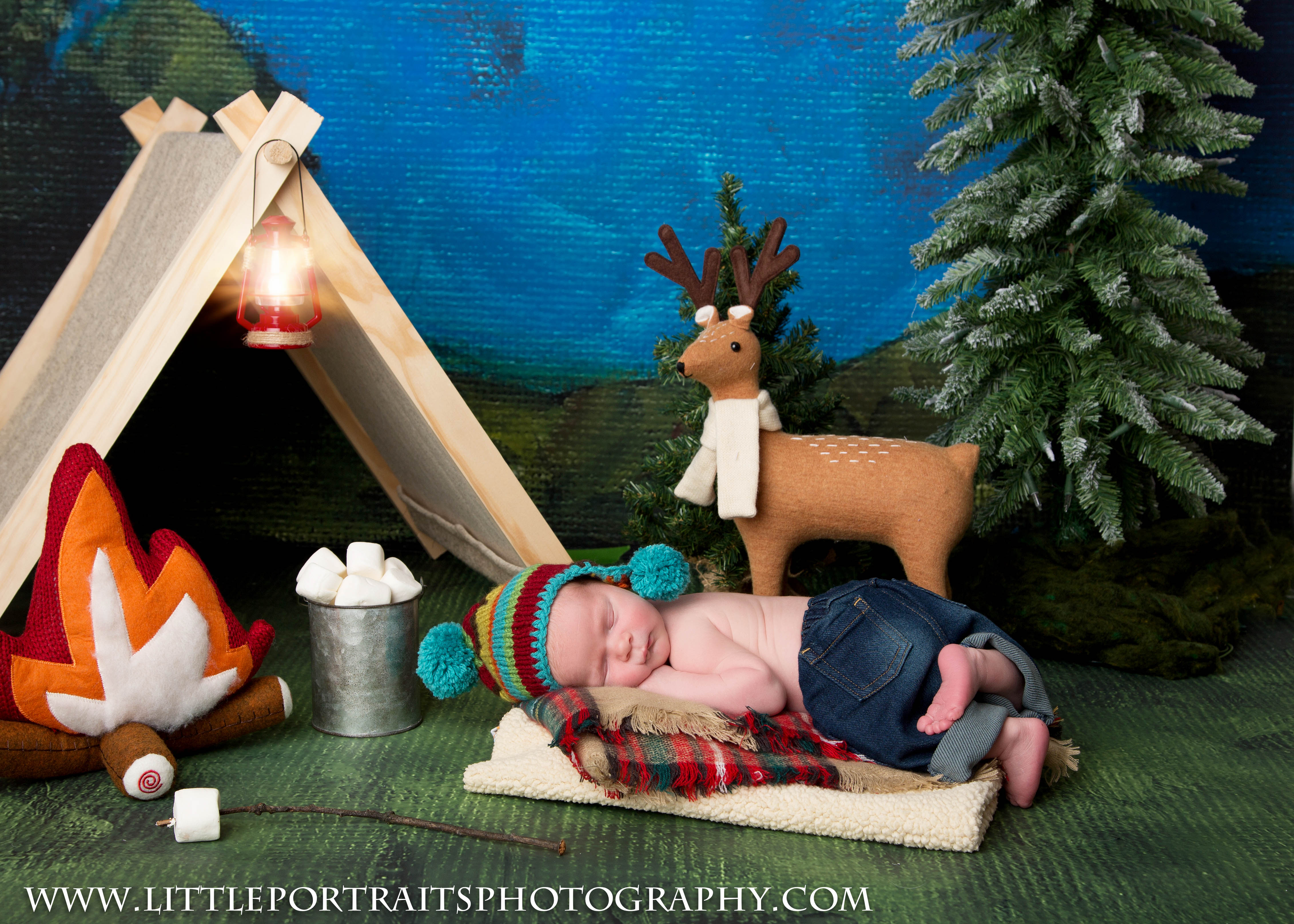 Gurnee Newborn Photographer