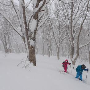 今季一の降雪