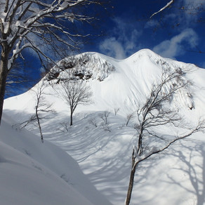 2019/1/17 菱ヶ岳