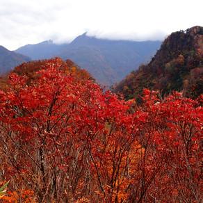 2019/10/24~25 根知駒ヶ岳