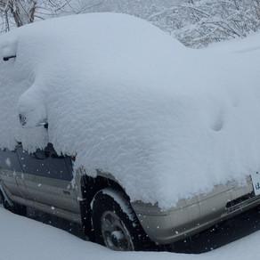 順調な積雪