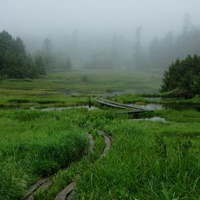 志賀高原の池巡り