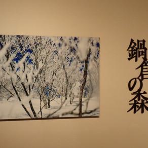 鍋倉の森 写真展 in 飯山市美術館