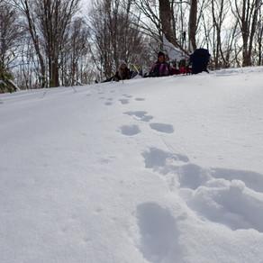 2020/1/17 袴岳 スノーシュートレッキング