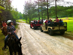Horses and Hummers