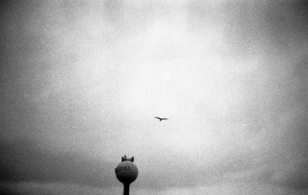 tybee island water tower.