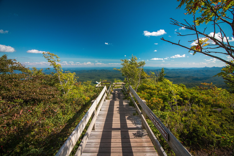 Top Trail